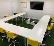 IncuHive Meeting Room - Basingstoke